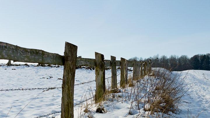 winter-weidezaun-spaziergang